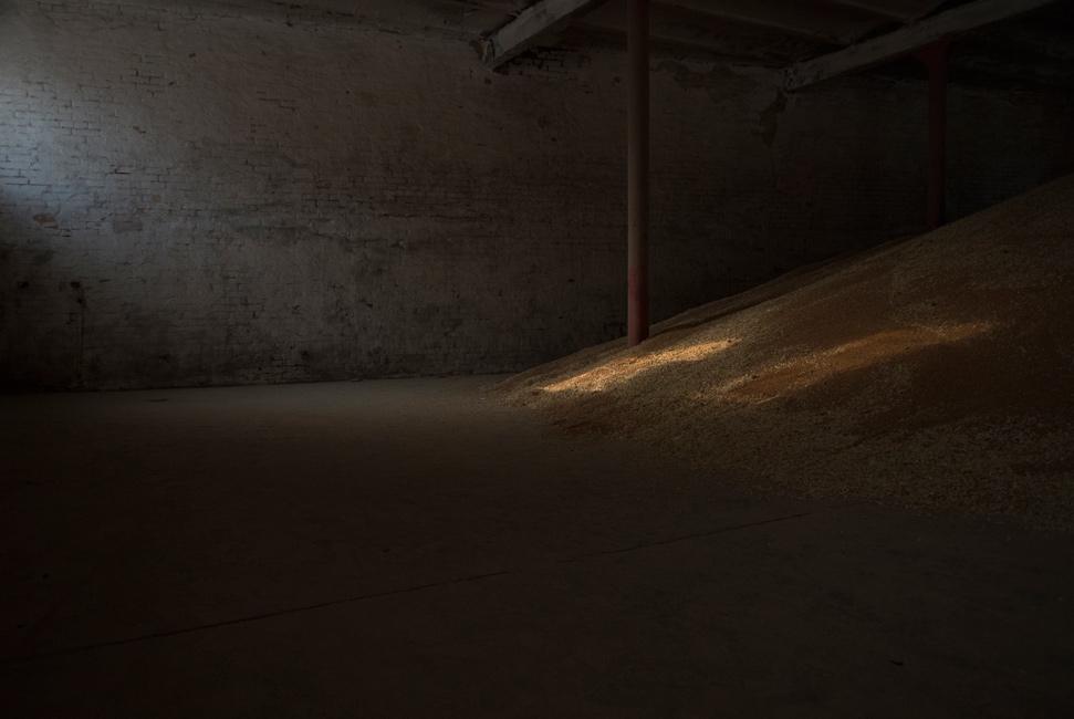 Täglich Brot, Serie 1, Ernte 2016, Bild 2, Fotografie, 40 x 60 cm, Zu sehen sind Sonnenflecken auf einem raumhohen Getreideberg in einer Scheune. Die Motive der Serie entstanden bei Begleitung der Getreideernte 2016. Der Serie zu Grunde liegt die Frage danach, was für den Menschen in Wirklichkeit wichtig ist, wovon er lebt, was er braucht und wie er seine Wahrnehmung beschaffen ist. Anna Ullrich, Das Copyright © 2016 des Bildes liegt bei Anna Ullrich. Alle Rechte vorbehalten.