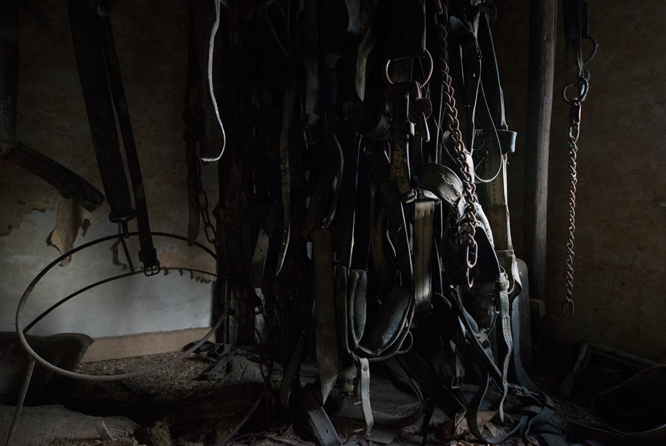 Täglich Brot, Geschirr, Serie 4, 2020, Fotografie, 40 x 60 cm, Zu sehen sind alte Pferdegeschirre. Die Motive der Serie entstanden 2020. Der Serie zu Grunde liegt die Frage danach, was für den Menschen in Wirklichkeit wichtig ist, wovon er lebt, was er braucht und wie er seine Wahrnehmung beschaffen ist. Anna Ullrich, Das Copyright © 2020 des Bildes liegt bei Anna Ullrich. Alle Rechte vorbehalten.